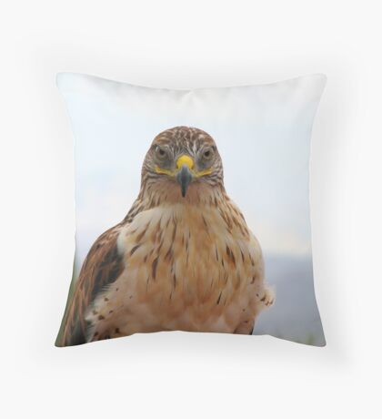 Ferruginous hawk portrait Throw Pillow