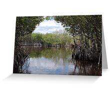 Everglades Greeting Card