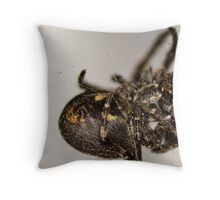 Spinning the Web Throw Pillow
