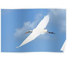Flying in Fascination Poster