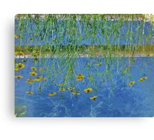 Irrigation Reflection...When Your World Is Upside Down Canvas Print