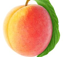 Peach with leaf by 6hands