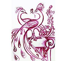 PEACOCKS IN LOVE - Pink Purple White Hues Photographic Print