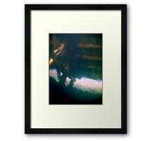 Resting Cormorants. Framed Print