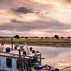 Marsh View by JEZ22