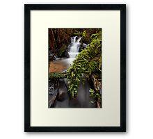 Wonwondah Falls Framed Print
