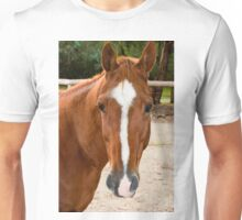 0221 Horse Unisex T-Shirt