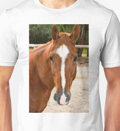 0221 Horse T-Shirt
