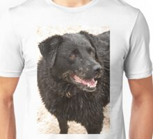 1114 Kip at the Beach Unisex T-Shirt