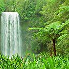 The beautiful tropical Millaa Millaa waterfall in Australia by Johan Larson