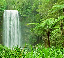 The beautiful tropical Millaa Millaa waterfall in Australia by Johan Larson