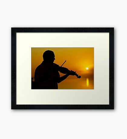Melody at Sunrise Time Framed Print