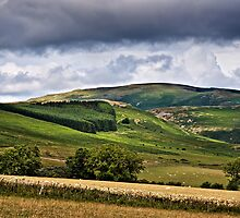 Long Crag, Northumberland National Park, England by David Lewins