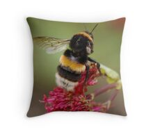 One Wing only  Throw Pillow