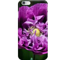 Pretty Purple Poppy Flower iPhone Case/Skin