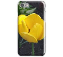 Beautiful Bloom iPhone Case/Skin