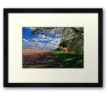 Willow by Corn Field in the Fall Framed Print