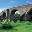 Stirling Bridge by derekwallace
