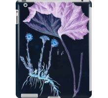 A curious herbal Elisabeth Blackwell John Norse Samuel Harding 1737 0522 Colts Foot or Poles Foot Inverted iPad Case/Skin