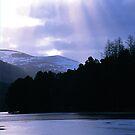 Loch an Eilean by derekwallace