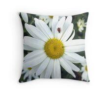 White Daisy Flower and Ladybug  Throw Pillow