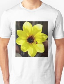 Yellow Dahlia Flower with Ladybug  T-Shirt