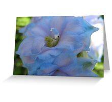 Delphinium Bloom Greeting Card