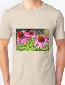 Pink and Purple Echinacea Cone Flower Macro Unisex T-Shirt