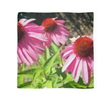 Pink and Purple Echinacea Cone Flower Macro Scarf