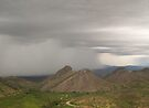 Desert Monsoon Storm by Lucinda Walter