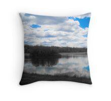 Drayton Plains Throw Pillow