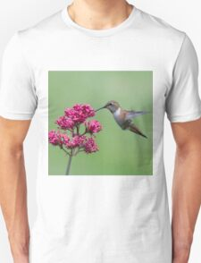The Hover and Slurp Unisex T-Shirt