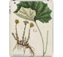 A curious herbal Elisabeth Blackwell John Norse Samuel Harding 1737 0522 Colts Foot or Poles Foot iPad Case/Skin