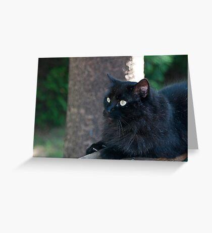Fierce Attack Cat Greeting Card