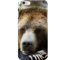 Grizzly Bear in the Colorado Rockies summer shade iPhone Case/Skin