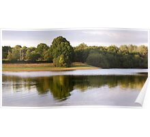 Trees Reflected in a Lake Poster