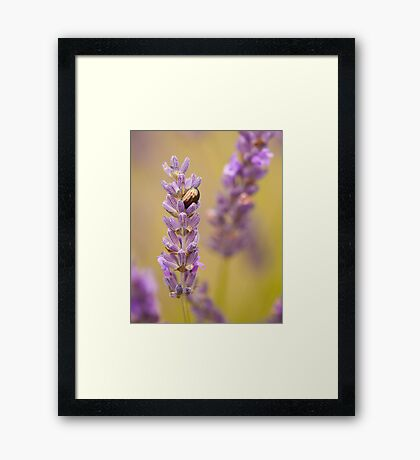 """""""Beauty and the Beast"""" Framed Print"""