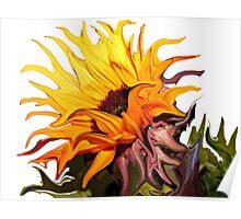 ~ Fireburst ~ Poster