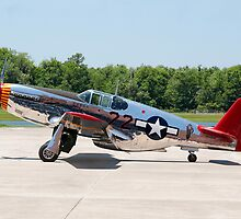 """INA The Macon Belle"" North American P51-C Mustang by Mark Kopczewski"