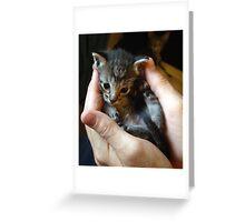 handful of cute Greeting Card