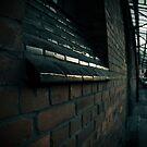 dusk ..... by BrainCandy