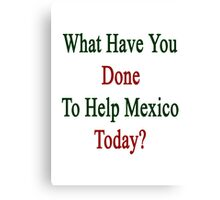 What Have You Done To Help Mexico Today?  Canvas Print