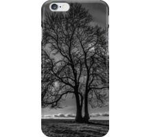 The shady watering hole iPhone Case/Skin