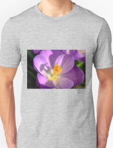 Spring - HDR Unisex T-Shirt