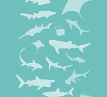 Sharks and Rays! by Jen Richards