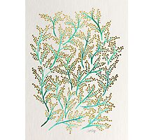 Green & Gold Branches Photographic Print