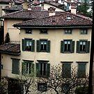 Bergamo by muckypup