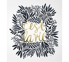 C'est la Vie – Grey & Gold Photographic Print