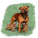 Staffy Momma & bubs ♥ by Cazzie Cathcart