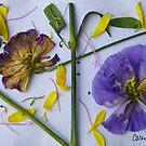Botanical Collage 4 by Caren